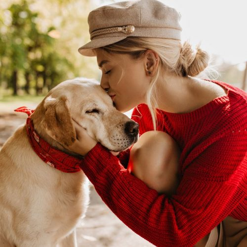 Dog breeds that enjoy the great outdoors